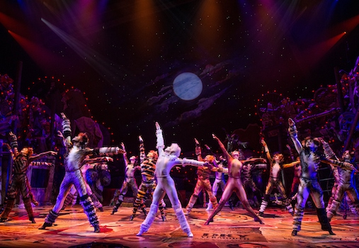 CATS at Segerstrom Center for the Arts Costa Mesa