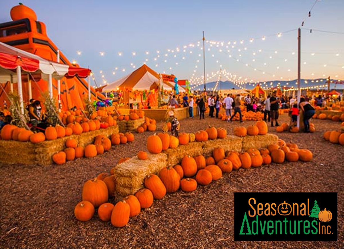 Seasonal Adventures – Pumpkin Patch