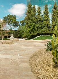 <i>California Scenario</i> (Noguchi Garden)
