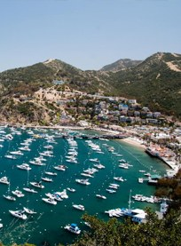 Catalina Island Image