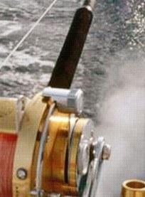 Dana Wharf Sportfishing Image