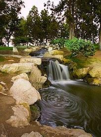 TeWinkle Park Image