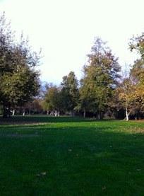 Talbert Regional Park Image